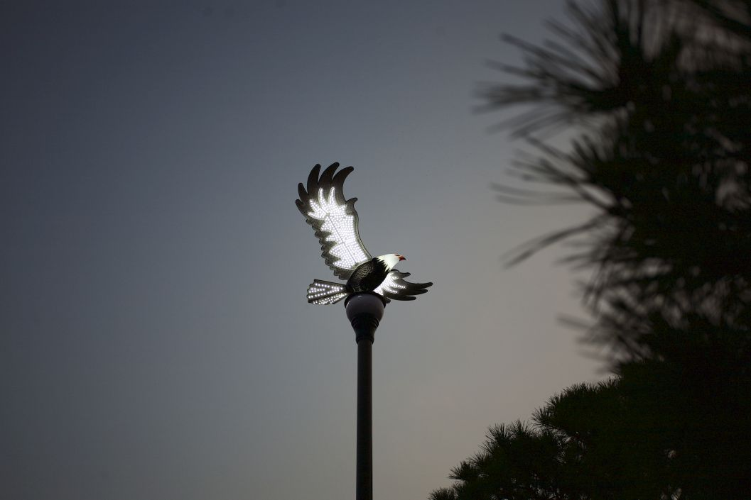 Eagle streetlight by GigaTera