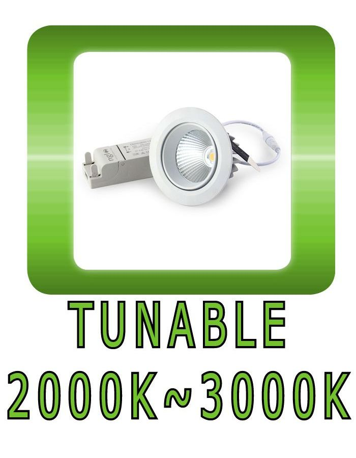 Tunable downlight